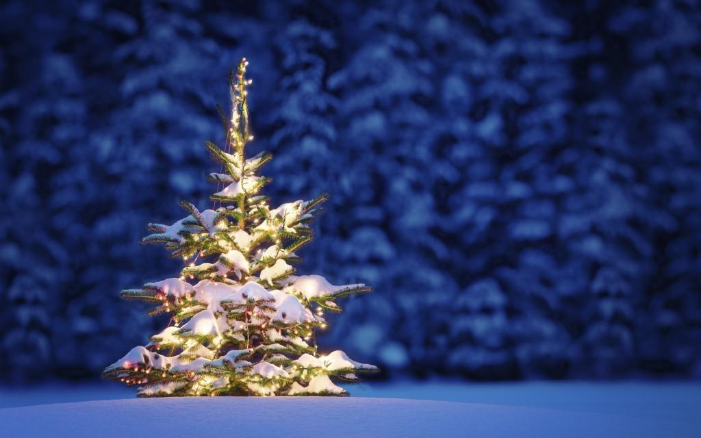 jõulupic1